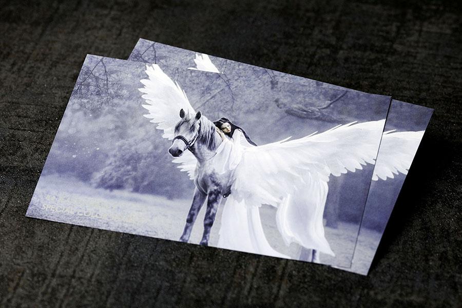 シルバー印刷実例②のイメージ画像1